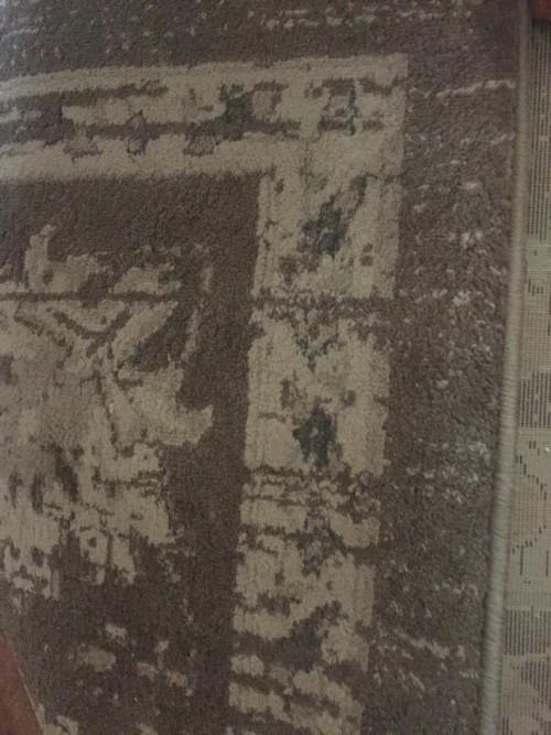 Tappeto vintage grigio 3x4 metri